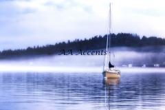 Boats20