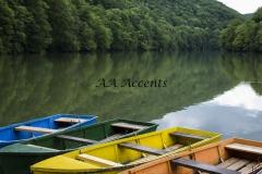 Boats53