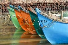Boats55