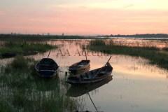 Boats57
