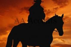 Horses60