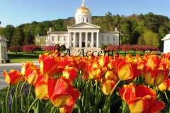 VERMONT STATE HOUSE55
