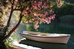 Boats62