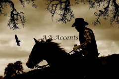 Horses23