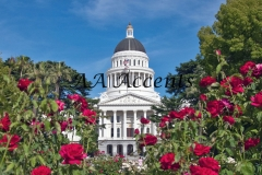 CALIFORNIA STATE CAPITOL 26
