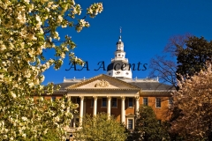 MARYLAND STATE CAPITOL23